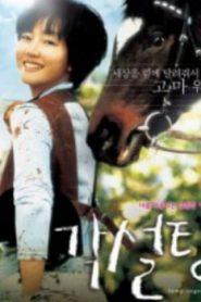 Lump of Sugar Asian Drama Movie Watch Online