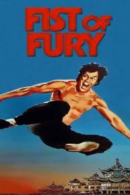 Fist of Fury Asian Drama Movie Watch Online