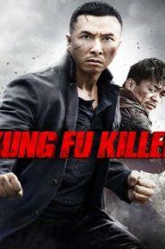 Kung Fu Jungle Asian Drama Movie Watch Online