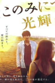 The Light Shines Only There Asian Drama Movie Watch Online