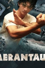 Merantau Asian Drama Movie Watch Online