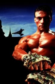 Kickboxer Asian Drama Movie Watch Online