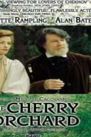 The Cherry Orchard Asian Drama Movie Watch Online