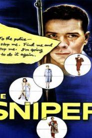 The Sniper Asian Drama Movie Watch Online