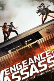 Vengeance of an Assassin Asian Drama Movie Watch Online
