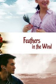 Feathers in the Wind Asian Drama Movie Watch Online
