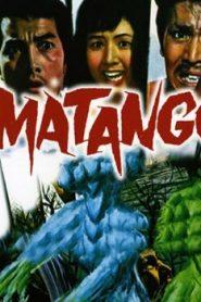 Matango Asian Drama Movie Watch Online