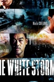 The White Storm Asian Drama Movie Watch Online