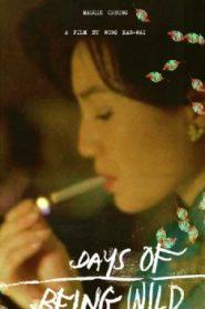 Days of Being Wild Asian Drama Movie Watch Online