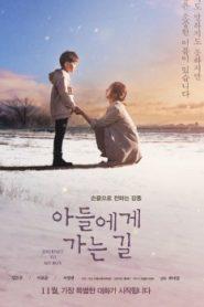 Journey to My Boy Asian Drama Movie Watch Online