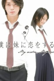 My Sister, My Love Asian Drama Movie Watch Online