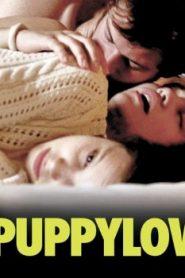 Puppylove Asian Drama Movie Watch Online