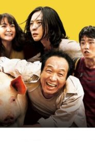 Survival Family Asian Drama Movie Watch Online