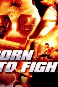 Born to Fight Asian Drama Movie Watch Online