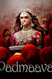 Padmaavat Asian Drama Movie Watch Online